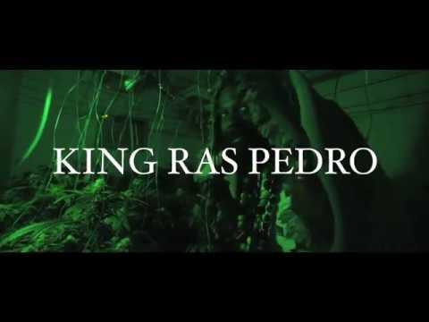 Video King Ras Pedro - Marihuana download in MP3, 3GP, MP4, WEBM, AVI, FLV January 2017