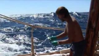 Nonton The Tangaroa Expedition  The Kon Tiki Expedition  2012 Documentary Film Subtitle Indonesia Streaming Movie Download