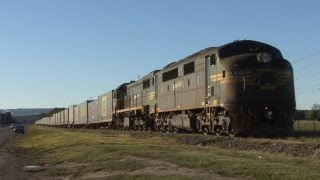 Maryvale Australia  city pictures gallery : Pacific National on the Maryvale Line: Australian Trains