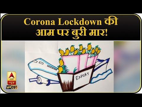 Corona Lockdown ने कैसे तबाह किया फलों के राजा आम का बाजार ? | COVID19 | USA | India| | ABP Uncut