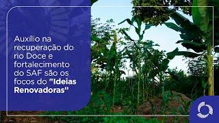 """O auxílio na recuperação do rio Doce e o fortalecimento do SAF são os focos do """"Ideias Renovadoras"""""""