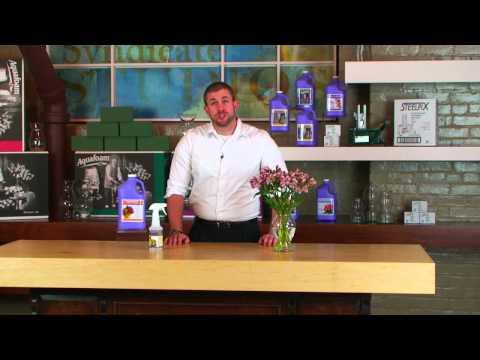 Step 5: How-To use AquaFinish Clear