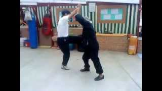 Kung Fu Academy Sydney - Hung Gar in Action