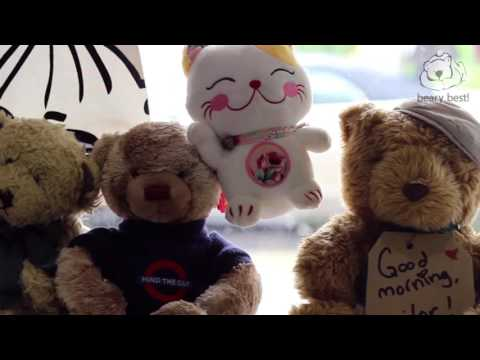 Video of Beary Best! by a beary good hostel
