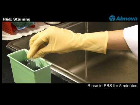 how to make eosin dye