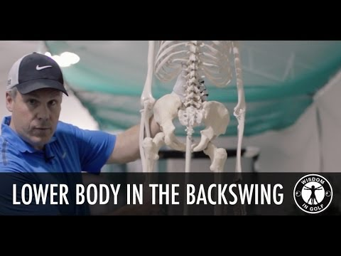Lower Body in the Backswing - Shawn Clement's Wisdom in Golf