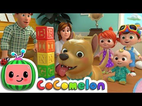 Bingo   CoComelon Nursery Rhymes & Kids Songs