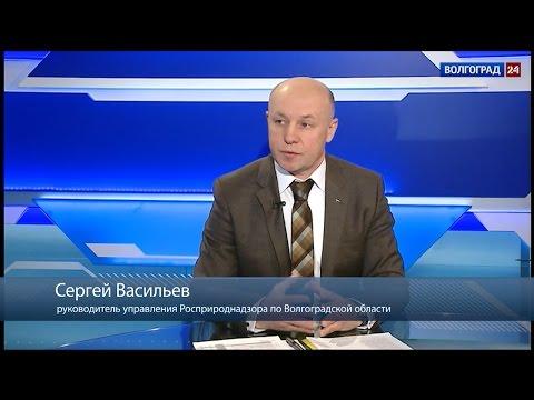 Сергей Васильев, руководитель управления Росприроднадзора по Волгоградской области
