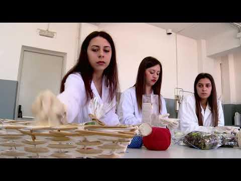 """Al """"Panella-Vallauri""""di Reggio Calabria il primo premio di """"Storie di alternanza"""""""