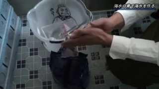 アクアリウム 海水アクアリウムを始めよう!其の一 [Japanese Marine Aquarium Beginning Vol.1]