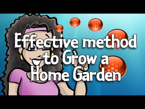 Effective method to Grow a Home Garden