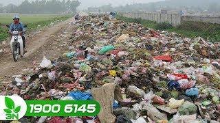 Nông nghiệp | Ô nhiễm rác thải nông thôn: Tình trạng ở mức báo động