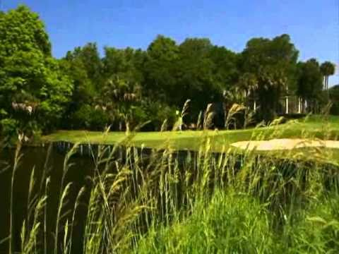 Jack Nicklaus video on turtle point