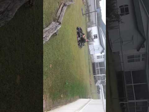 Backyard go karting