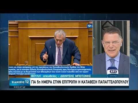 Για 5η ημέρα στην επιτροπή η κατάθεση Παπαγγελόπουλου | 24/06/2020 | ΕΡΤ