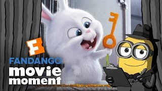 Brian the Minion watches The Secret Life of Pets - Fandango Movie Moment (2016) by  Movieclips Trailers