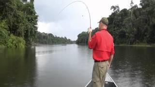Iniciando Uma Pescaria De Fly