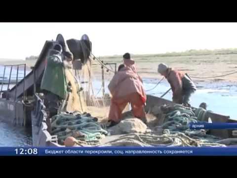 Нерестовый запрет в тюменской области