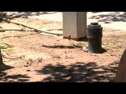 Yuma residents say sewage fills their yards and landlord has done nothing about it
