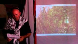 Murad Alkufash -