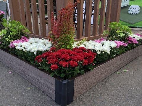 Дизайн цветников с