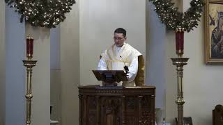 Video The Love of the Divine Infant for Us, by Father Germán Fliess MP3, 3GP, MP4, WEBM, AVI, FLV Januari 2019