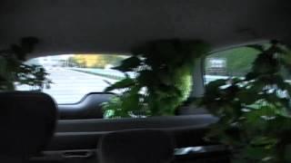 #214 Gartenverrückte auf der Reise