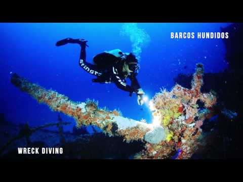 Wreck Dives cancun