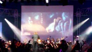 ManjaKi na Video Games Live 2011 Rio - Russell Brower / Blizzard