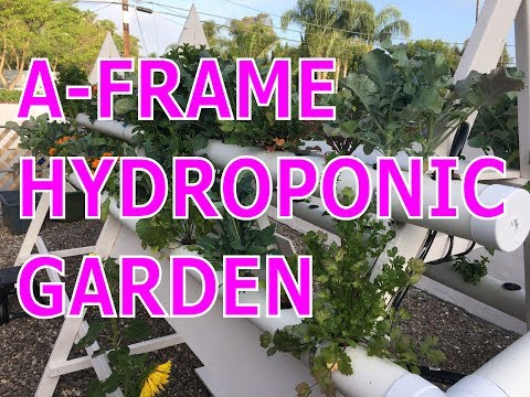 Diy Best Vertical A Frame Hydroponic Garden Farm Build On Grow