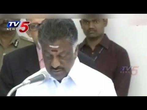 Panneerselvam to Take Oath as Tamil Nadu CM : TV5 News