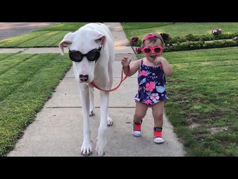 Hauska pari – Kuuro koira ja pikkutyttö