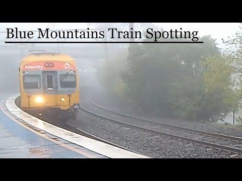 Just a Blue Mountain trainspotting video