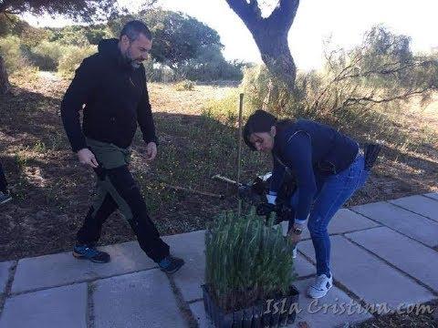 Plantación de Pinos por alumnos y alumnas de los centros escolares de Isla Cristina