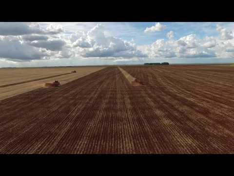 Plantio de Milho Safrinha com Trimble AutoPilot - São Gabriel do Oeste - MS