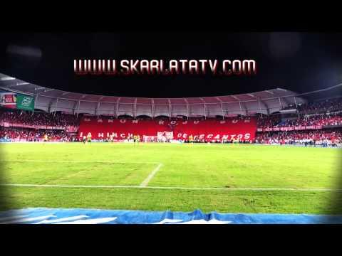 VIDEO TAPA TRIBUNAS BARON ROJO SUR SALIDA PERFECTA - Baron Rojo Sur - América de Cáli