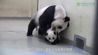 Мама, я не хочу ложиться спать!