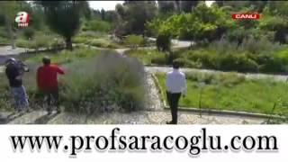 Güneş Lekeleri için Bitkisel Kür - Prof. Dr. İbrahim Saraçoğlu