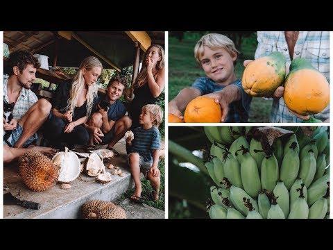 A DAY IN OUR HAWAII LIFE  Big Island Abundance