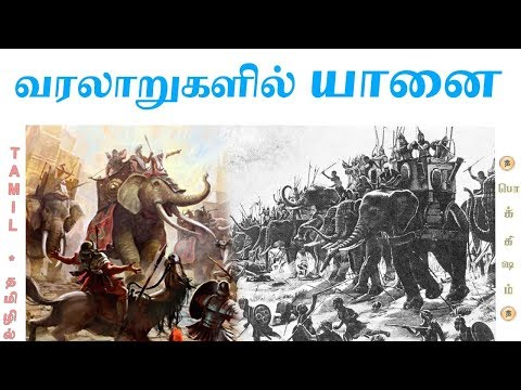 The Elephant's Journey | மறைக்கப்படும் வரலாறு யானை யுத்தம் |  Tamil | Pokkisham