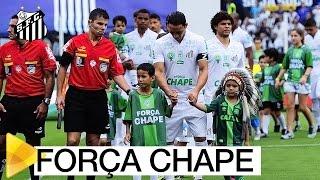 Na despedida do Brasileirão 2016, não foi só o Santos que entrou em campo. Nas camisas de nossos jogadores e da nossa comissão técnica, carregamos os ...