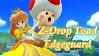 Z drop edge guard tech discovered by dark.pch