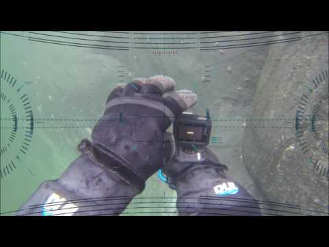 Real Time Video Game: Underwater Free Diving in Antarctica