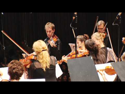 Grieg String Quartet No.1 (excerpt 2)