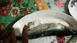 Как посолить сельдь в домашних условиях вкусно в рассоле
