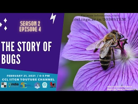 The Story of Bugs । 3030 STEM Season 02 Episode 4