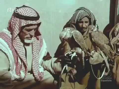 وثائقي عن دولة الكويت الصحراء والبحري