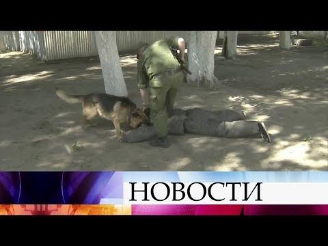 ВТюмени проходят соревнования кинологов иих подопечных собак напервенство войск Росгвардии. (видео)