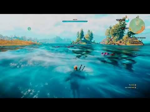 FAST Witcher 3 EXP Exploit 1.60 WORKING 1800 EXP AN HOUR!!