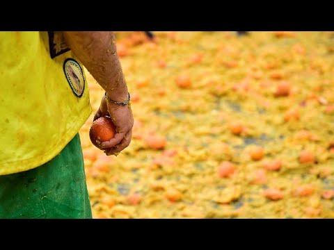 """Η """"μάχη των πορτοκαλιών"""" στην Ιταλία"""